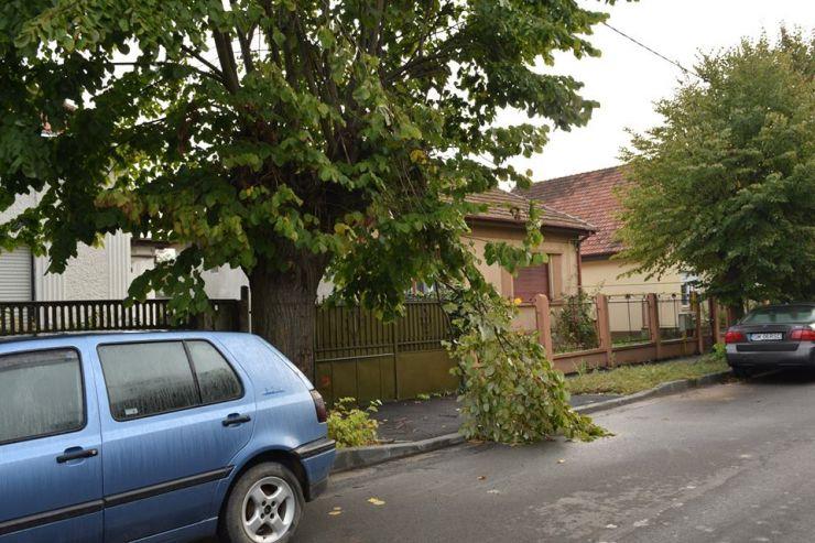 Pagube, după furtună. Ce pot face cei afectați