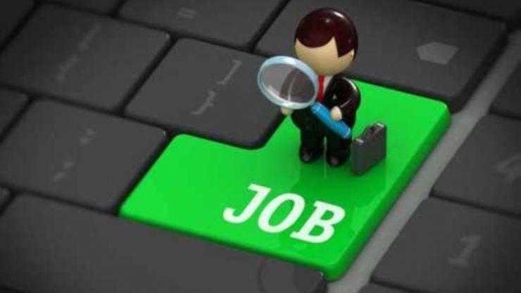 Peste 4.200 de persoane angajate în primele 10 luni ale anului prin programele AJOFM Satu Mare