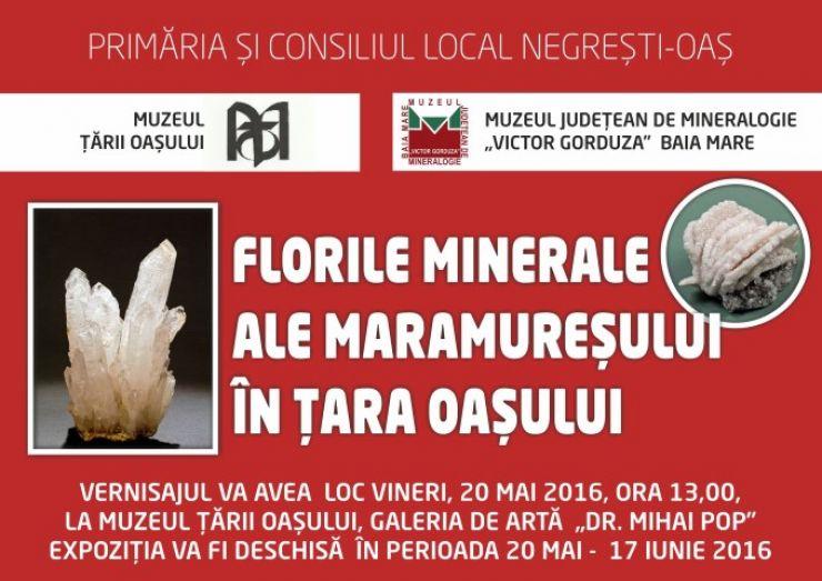 """Expoziția """"Florile minerale ale Maramureşului, în Ţara Oaşului"""", la Muzeul Țării Oașului"""