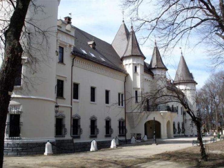 Concert de arii și opere de Crăciun la Castelul din Carei