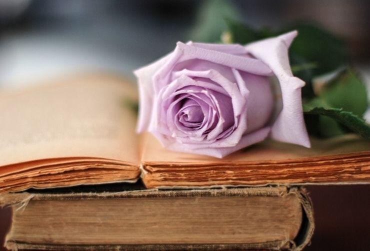 Cartea, cel mai inspirat cadou pentru sătmărencele pasionate de lectură