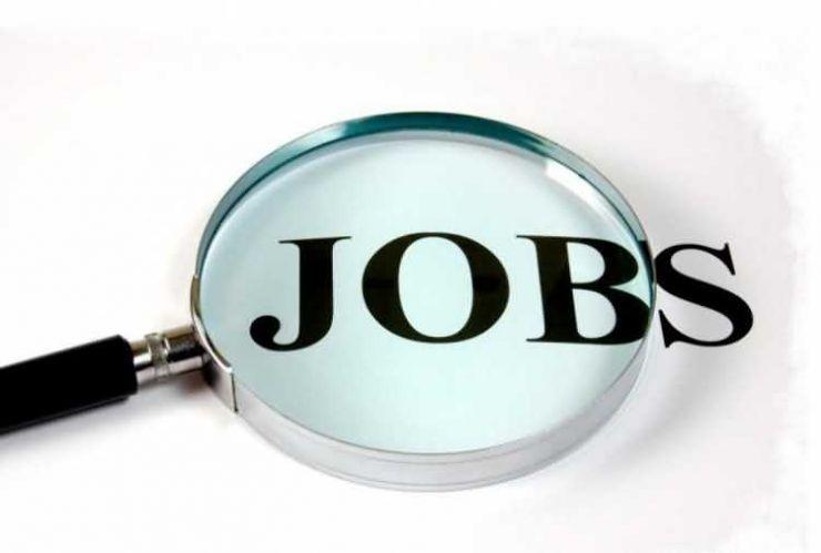 Absolvenții șomeri, așteptați la bursa locurilor de muncă