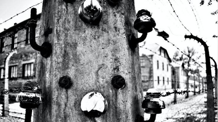 Expoziție fotografică cu ocazia Zilei Internaționale de Comemorare a Victimelor Holocaustului, la Castelul din Carei