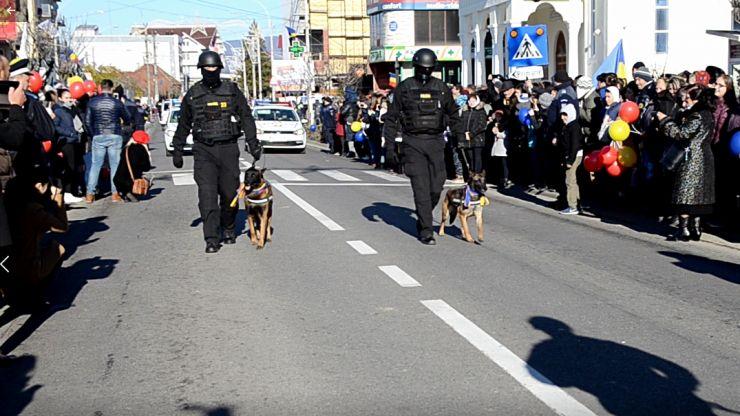 Contrabandistă de ţigări, dată de gol de câinele poliţist