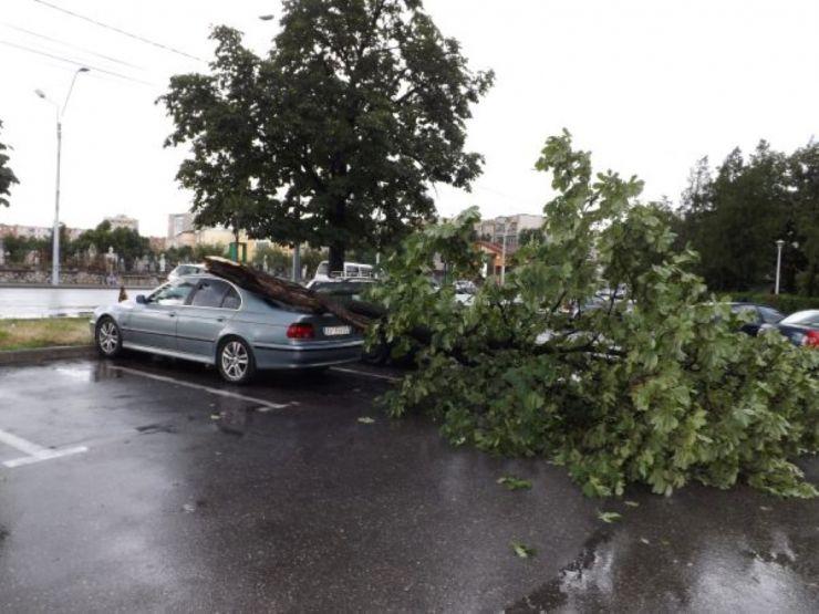 Copaci căzuți pe carosabil, garduri și mașini, în urma furtunilor