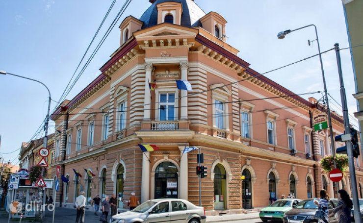 """Consiliul Județean Satu Mare caută sediu pentru Bibliotecă la """"mica publicitate"""""""