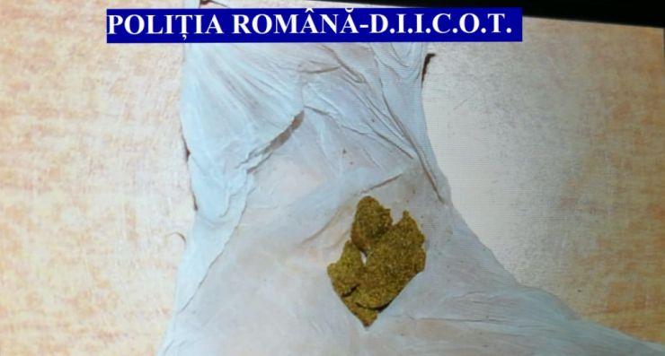 Grupare specializată în trafic de cocaină prinsă în flagrant
