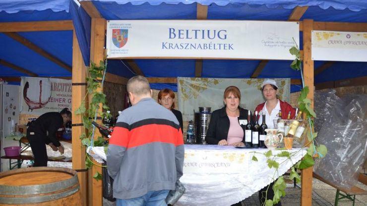 Crama Cobusceanu din Beltiug și Podgoria Viile Halmeului, cei mai buni producători de vin din județ