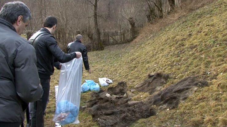 22 de persoane, cercetate pentru braconaj și sute de kilograme de vânat, confiscate