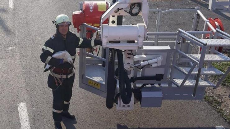 FOTO Pui de barză căzut din cuib, salvat de pompierii sătmăreni