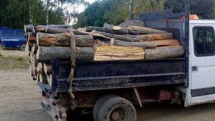 Careian amendat, după ce a fost prins transportând ilegal cu o autoutilitară 3,7 metri cubi de lemn