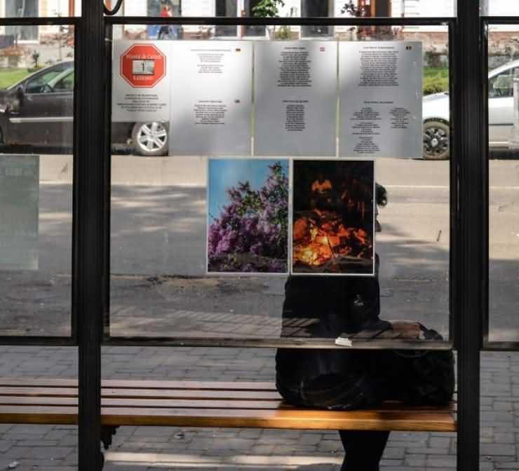 Minutul de cultură continuă și în luna mai în stațiile de autobuz din Carei