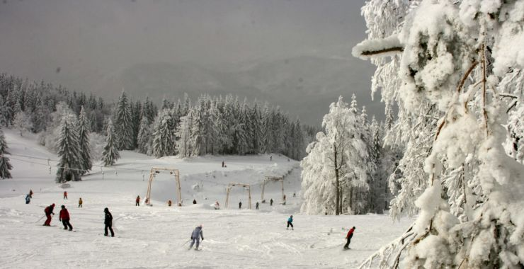 Ninge ca-n poveşti: Strat de zăpadă de 26 de centimetri la Cavnic