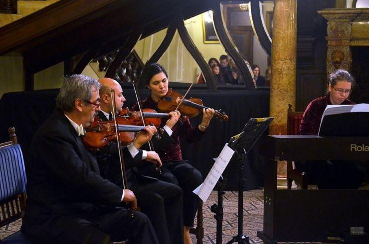 """Concert cameral de excepţie oferit de Camerata """"Euroart"""" din Baia Mare la Castelul din Carei"""