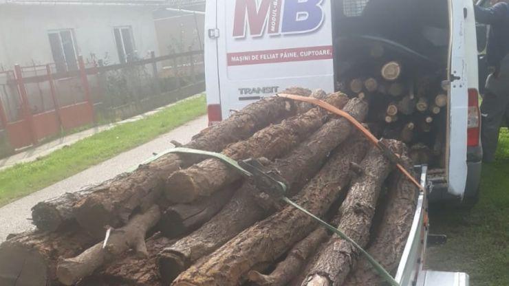 Depozitele de material lemnos de pe raza municipiului Carei verificate de Garda Forestieră