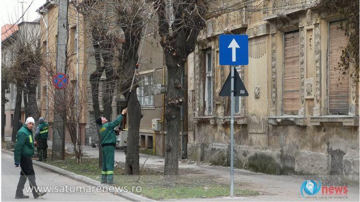 Circulația, închisă pe strada Tudor Vladimirescu. Se toaletează arborii