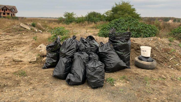 Saci cu gunoaie strânși de activiști sătmăreni în pădurea Noroieni și comuna Micula