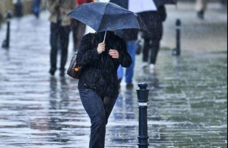 Cod galben de ploi la Satu Mare