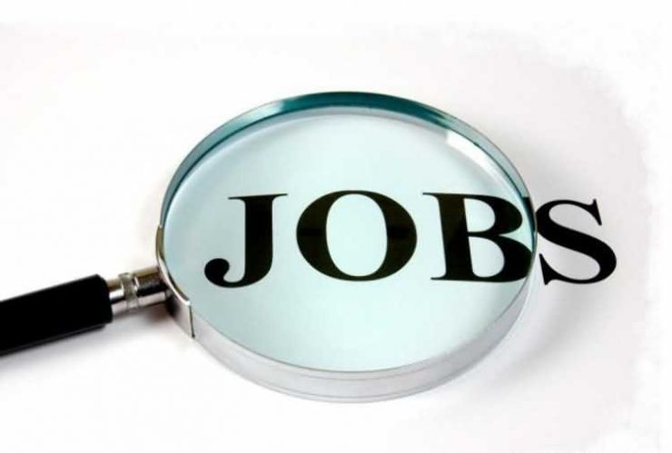 Peste 260 de joburi vacante în județul Satu Mare