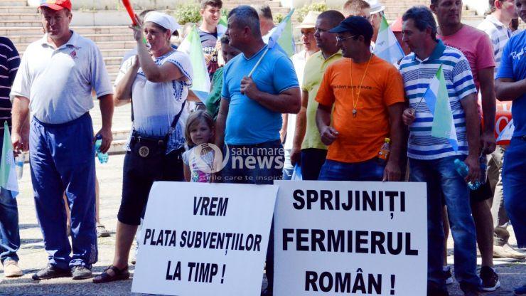 Fermierii sătmăreni își cer drepturile. Prefectura Satu Mare va informa și Guvernul în legătură cu revendicările lor