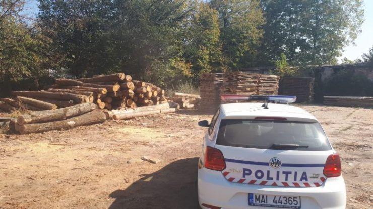 """Poliţia a """"deranjat"""" afacerile cu lemn: 240 mc confiscaţi"""