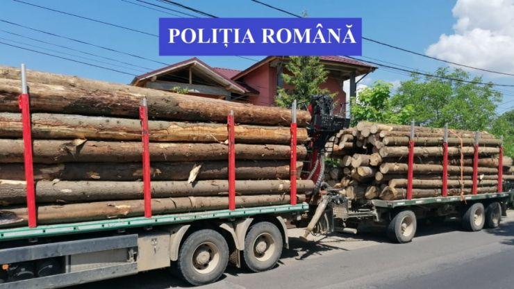 Bărbat (32 ani) din Negrești-Oaș prins cu o remorcă cu lemne
