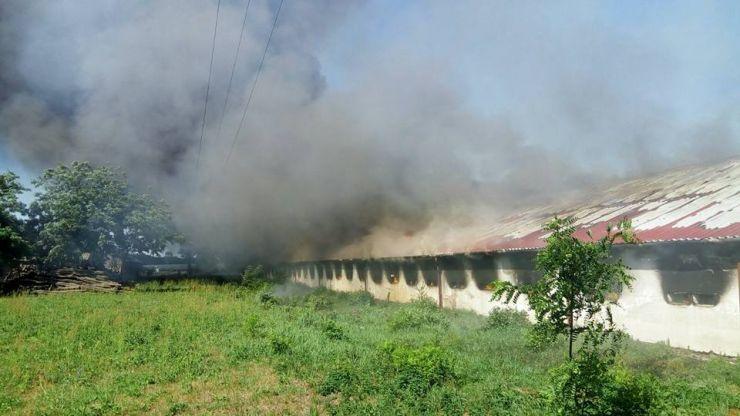 O hală de peste 2.500 metri pătrați a ars în întregime