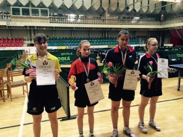 Tenis de masă. Medalie de aur pentru sportivul careian Maran Alin