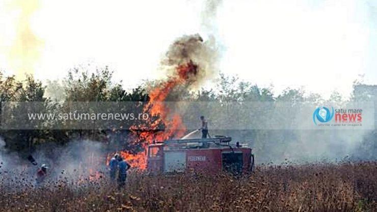 Incendiu puternic de vegetație în Bârsău