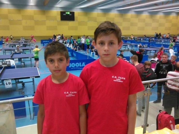 Activitate intensă la Clubul Elevilor - TAPO CAREI în cadrul secţiei de tenis de masă