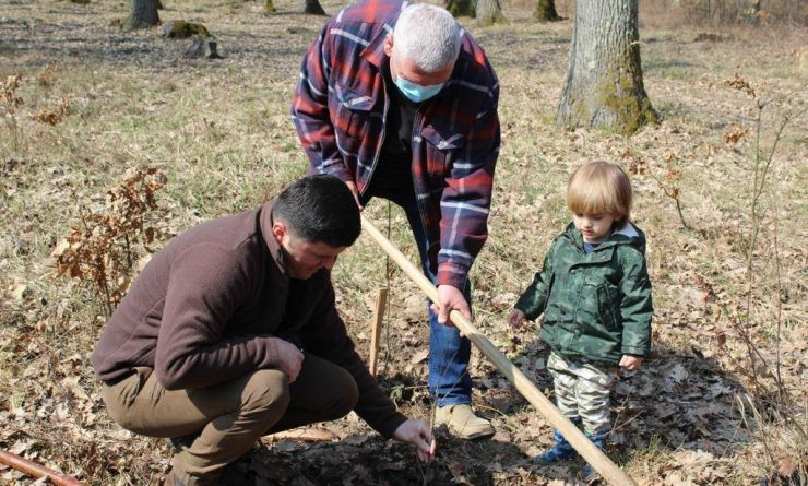 Deputatul Adrian Cozma a plantat puieți de gorun în pădurea de la Săcășeni
