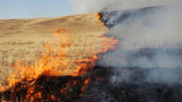 APM Satu Mare | Amenzi mari pentru arderea miriștilor, vegetației ierboase sau incendierea deșeurilor